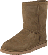 UGG - Cl. Short Dry leaf
