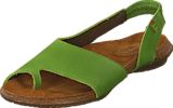 El Naturalista - Wakataua ND74 Green