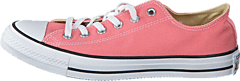 Converse - All Star-Ox Daybreak Pink/White/Black