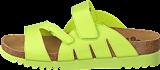 Scholl - Alabama Lime